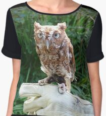 Screech Owl Women's Chiffon Top