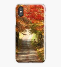 Autumn Path to Winter iPhone Case