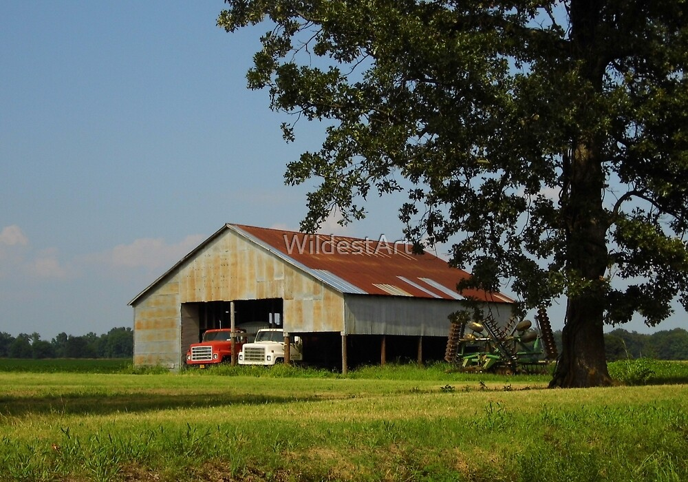 Truck Barn by WildestArt