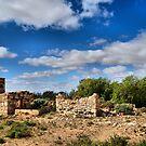 Flinders Ranges Ruined Homestead by George Petrovsky