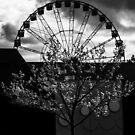 Darktree by Adam Calaitzis