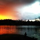 Portland Oregon Sunset  by Bellefleurista
