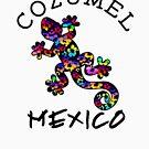 COZUMEL MEXICO LIZARD GECKO TROPICAL HIBISCUS FLOWER COLORFUL RAINBOW TROPICAL BEACH  by MyHandmadeSigns