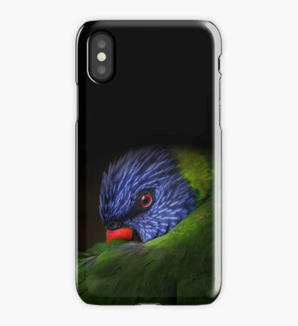 lorikeet iPhone Case