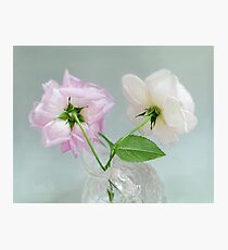 Two Vintage Roses Photographic Print