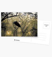 3276 Postcards