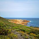 Point Hicks - Croajingolong National Park  by salsbells69