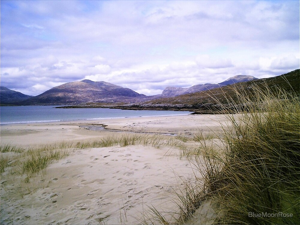 Long Grass - Isle of Harris by BlueMoonRose