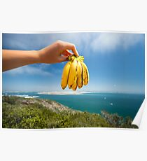 Healthy Breakfast - Food Photography Poster