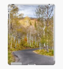 Lonely Aspen Canvas Print, Photographic Print, Art Print, Framed Print, Metal Print, Greeting Card, iPhone Case, Samsung Galaxy Case, iPad Case, Throw Pillow, Tote Bag, iPad Case/Skin