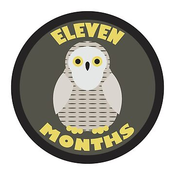 Baby Growth - Snowy Owl (Eleven Months) by babybigfoot