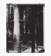 Waldeinsamkeit iPad Case/Skin