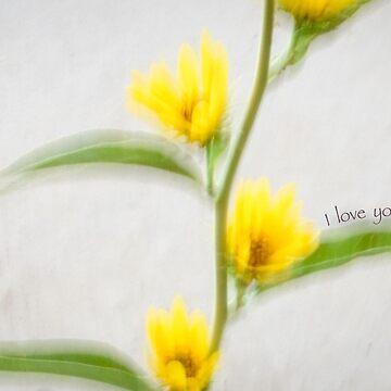 Sunflower Love by cherylintexas