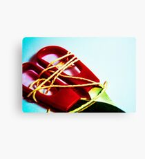 All Wrapped up Canvas Print