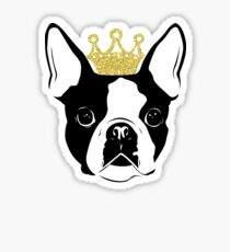 Boston Terrier with Crown Sticker