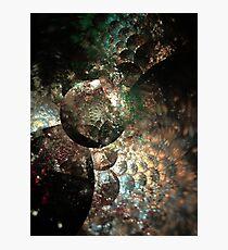 Cosmogony Photographic Print