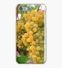 Vineyard Grapes  iPhone Case/Skin