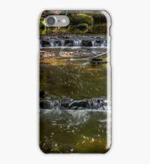 Rainforest creek iPhone Case/Skin