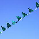 Flagged ~ by Emma  Wertheim