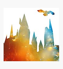 Castle with Owl Photographic Print