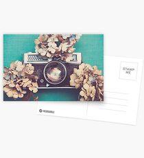 Camera & Hydrangea Postcards