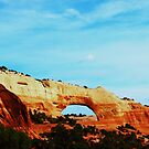 Arches Southern Utah by Lani Chipman