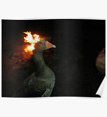 Fire Duck (goose on fire) Poster