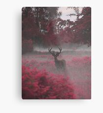 Another Stag, Another Planet 2 Metal Print
