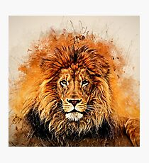 Liquid Lion Photographic Print