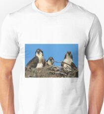 Osprey Family Photo Unisex T-Shirt
