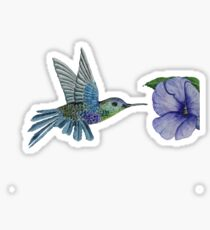 Hummingbird Sticker