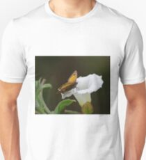 Gatekeeper Butterfly on a Convolvulus Flower  T-Shirt