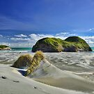 Wharariki Sand Dunes by Linda Cutche
