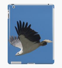 Diving Down iPad Case/Skin