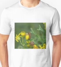 Cinnabar Moth Caterpillar  T-Shirt