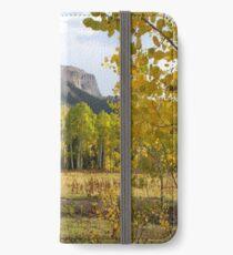 Deb's Meadow iPhone Wallet/Case/Skin