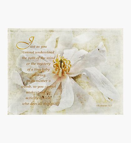 God does all things-Ecclesiastes 11:5 Photographic Print