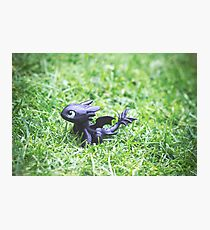 How to Train Your Dragon - Toothless Mini Figurine Photographic Print