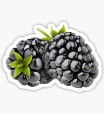 Blackberries Sticker