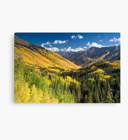 Valley in fall colors Canvas Print