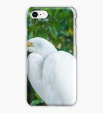 Egret Great iPhone Case/Skin