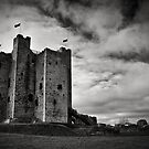 Trim Castle by Michelle McMahon