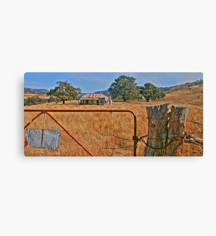 Treasure in a field of gold Canvas Print