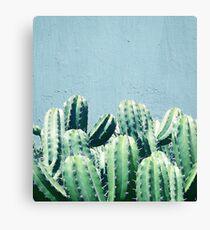 Cactus & Teal #redbubble #lifestyle Canvas Print