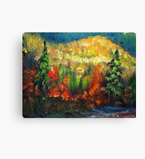 Vibrant Fall Colors  Canvas Print