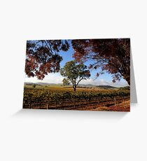 Barossa Autumn Landscape Australia Greeting Card