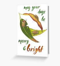 Christmas Beetles Greeting Card
