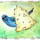Indigo Bunting Notes by Bart Castle