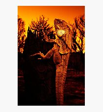 Frilled Neck Lizard on a Log Destroyed by Bushfire Photographic Print