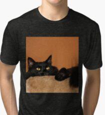Pooh Bear Peeping  Tri-blend T-Shirt